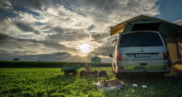 Wildes Campen in Deutschland - der legale Weg